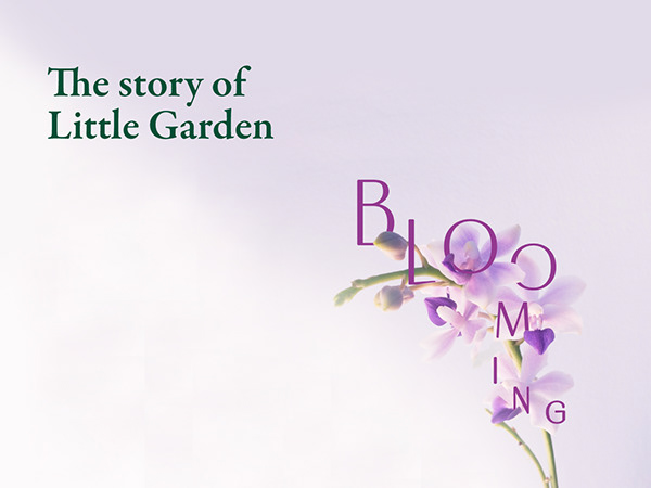 Little Garden Beauty & Spa