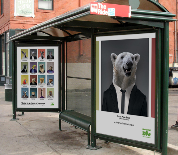 San Diego Zoo Yearbook On Behance