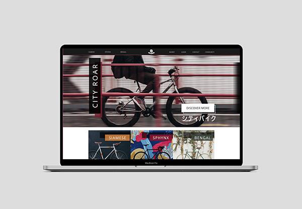 Bike manufacturer website design