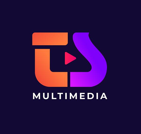 TS Multimedia