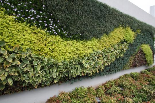 Green Walls green roofs vertical landscaping gardens urban farming succulents sedum LEED green building
