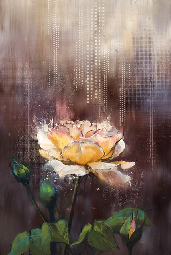 Flowers,Love,iphone