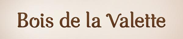 logo type Georgia Nature