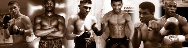 wordpress  Header sepia Boxing