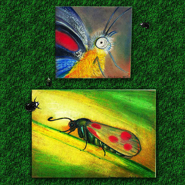 insect paint pastel home decor bugs microcosmos Nature animal macro recycling Hobby ink soft pastels butterfly