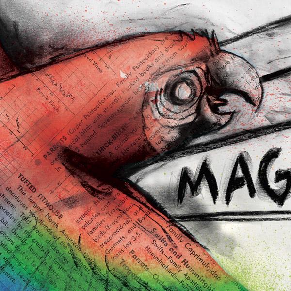 Animal Magnetism on Behance