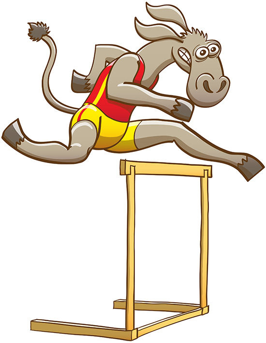 Amazing donkey running and jumping over a hurdle