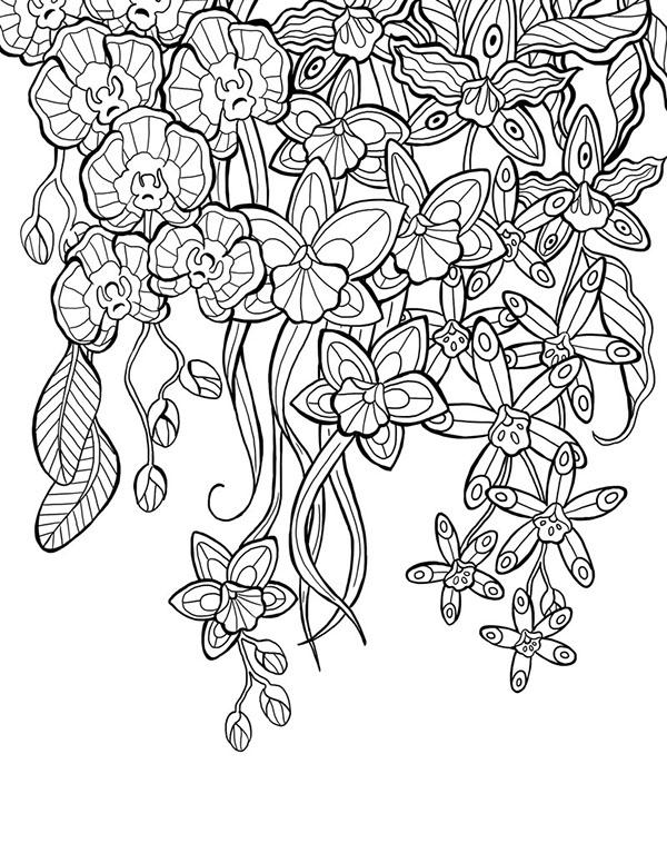 Mon jardin int rieur coloring book agenda 2015 on behance for Jardin interieur