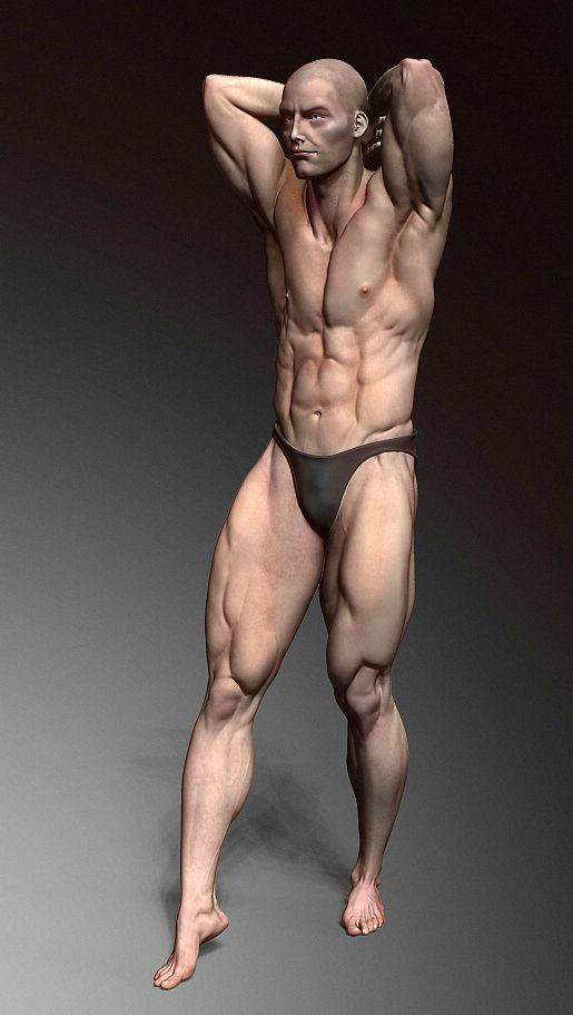 Male Anatomy Study In Pose On Behance