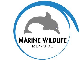 marine wildlife rescue logo on behance
