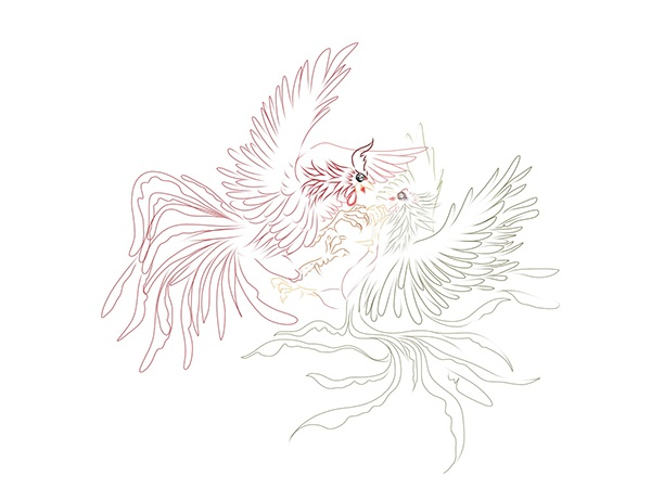 Line Art Rooster : Rooster fight on behance