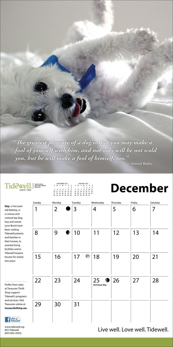 hospice therapy Dogs healthcare calendar award winning rescue dogs dogs patients nursing doctor Health medical nonprofit