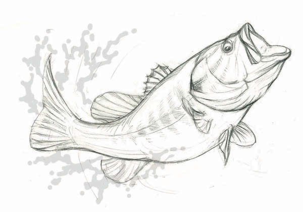 Want to get a vector format? Available as EPS at Shutterstock and ... M Fish Packaging