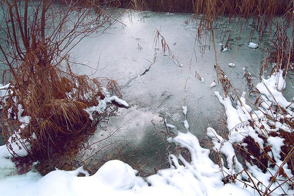land Nature winter summer water ice wood