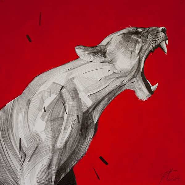 art abstract color graphic pencil red Cat wild paint Picture
