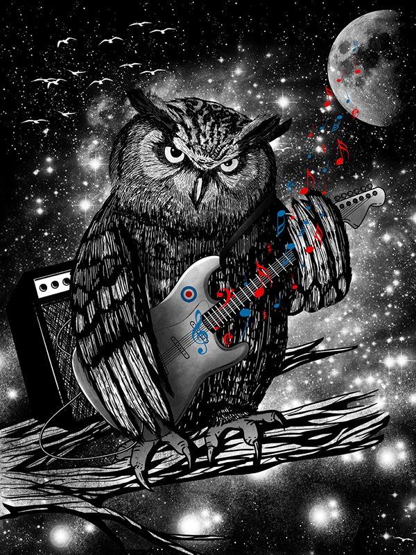 awesome  owl Space  icebergs man tiger abstract
