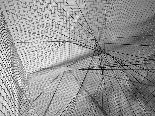 Principles Of Design Line : The making of design principles fall 2014 on risd portfolios
