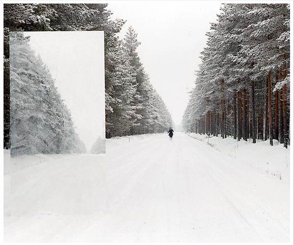 analog  landscape mirror Landscape