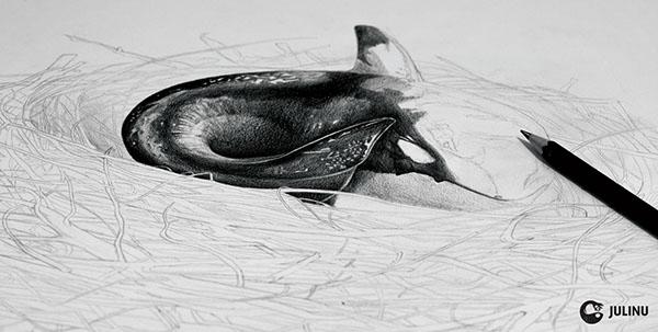 orca nest homeless plight julinu julian mallia Radical Transformation