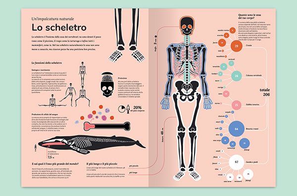 National Geographic Kids / The Human Body at a Glance