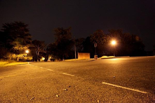 quiet deer lights artificial dark night colors