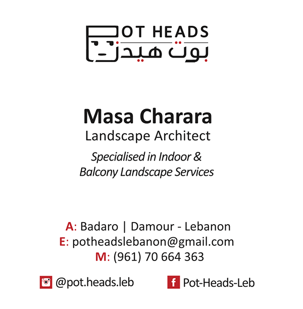 Plant pot heads funny brand identity logo flower Visual Communication New brand made in lebanon local product lebanon recycle Green life