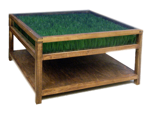 Nice Grass Coffee Table