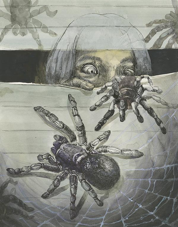 arachnophobia phobia