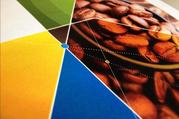 gvces  ID Visual  identity brand FGV sustentabilidade