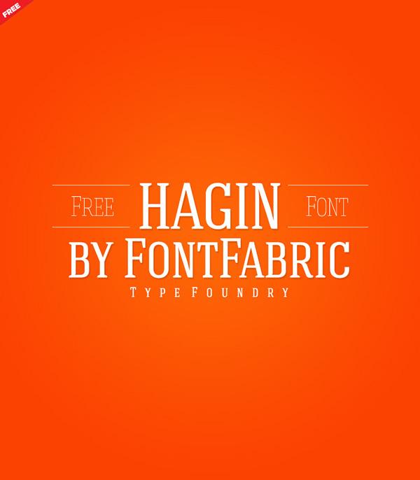 Hagin Serif Font Download