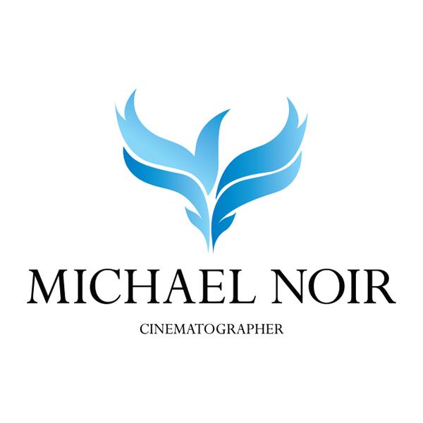 logo design brand fire Phoenix