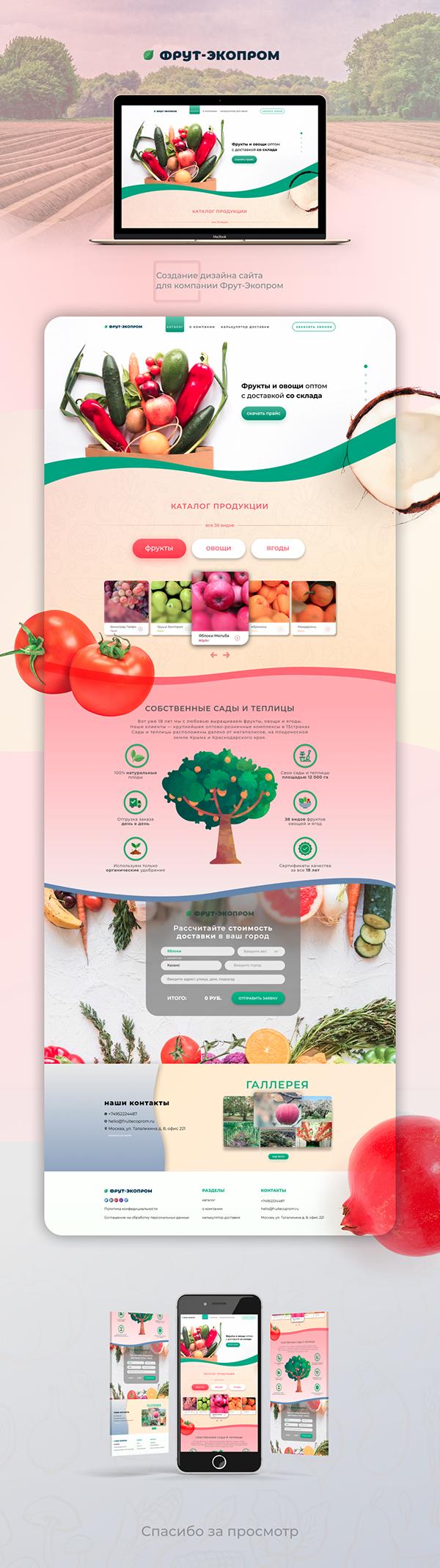 Создание дизайна сайта для агро компании Landing page