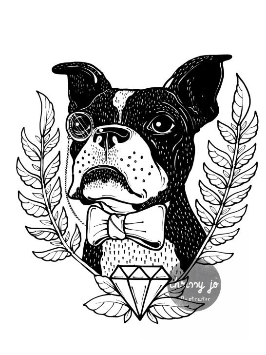 dogs ILLUSTRATION  charity Drawing  illustrations boston rescue tshirt shirt