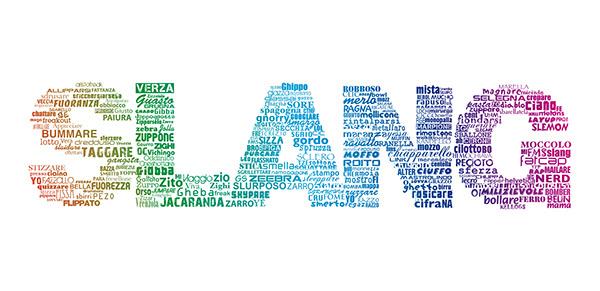 Essays on internet slang