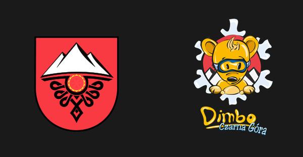 logo Ski bear kindergarten kids Case Study redesign