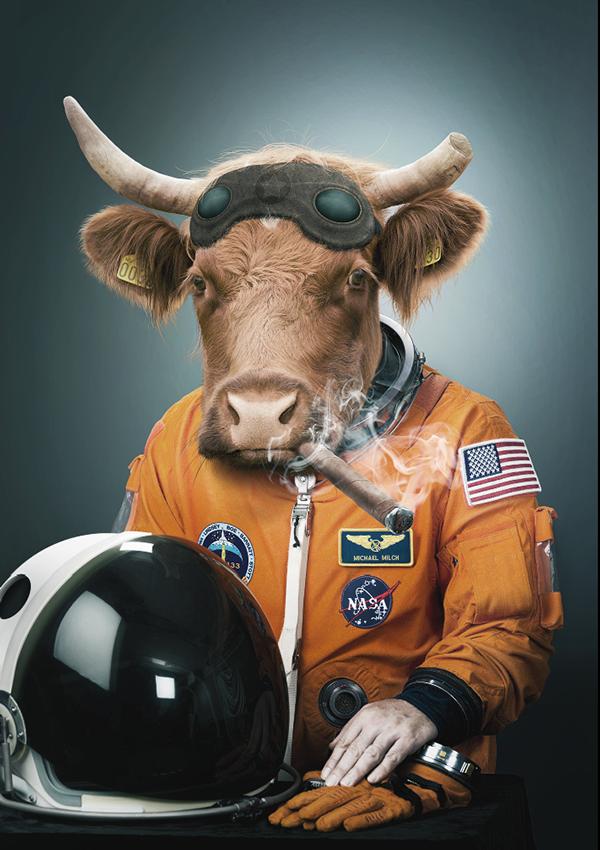 cow astronaut - photo #3