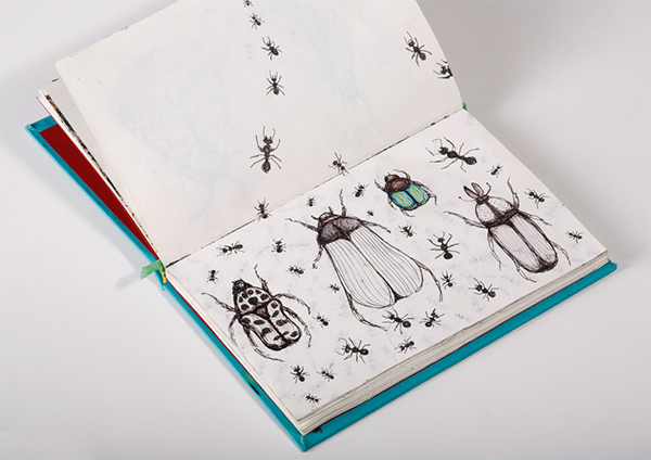 insect Carnet insetti penninghen esag