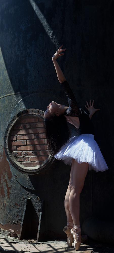 china national ballet huahua wu ballet