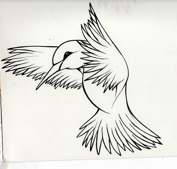 ilustracion dibujo diseño gráfico
