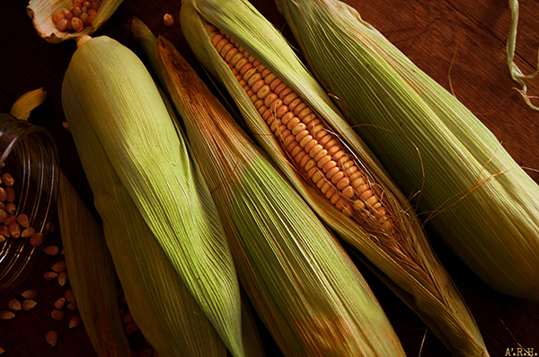 Corn : The Egyptian way to eat