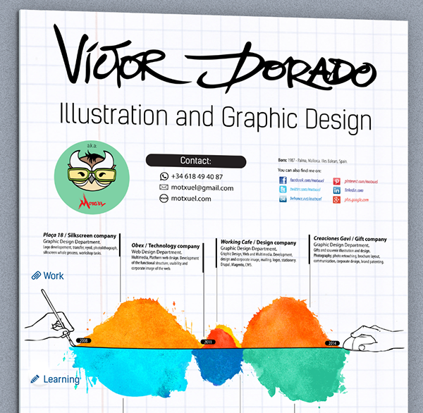 curriculum vitae infographics cv