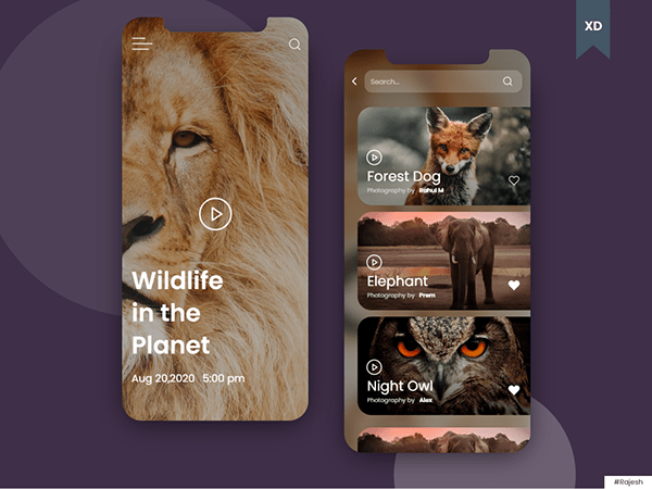 Wildlife Application UI