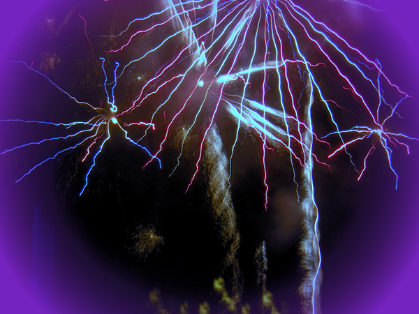 fireworks Photography  post processing graphic design