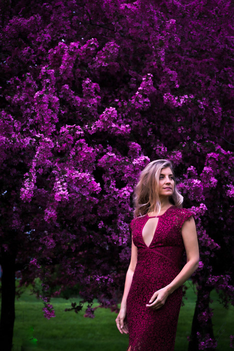Allentown pa Lori Patrick Images Spring Flowers Photoshoot