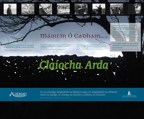typography   educational  university  NUI Galway  ireland  dvd packaging  promotional design