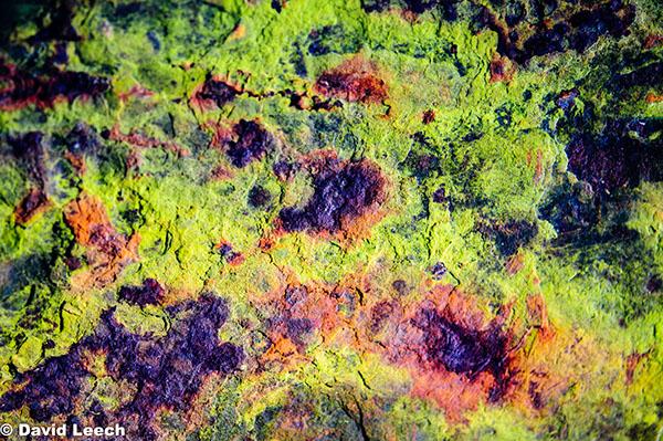 abstract conceptual experimental impressionistic metal corrosion derelict abandoned Disintegrating rust perish scrap Detritus Ferric oxides