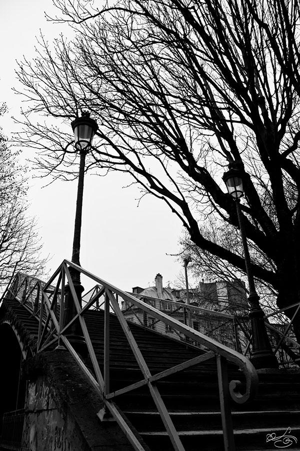 Paris Photographie monochrome