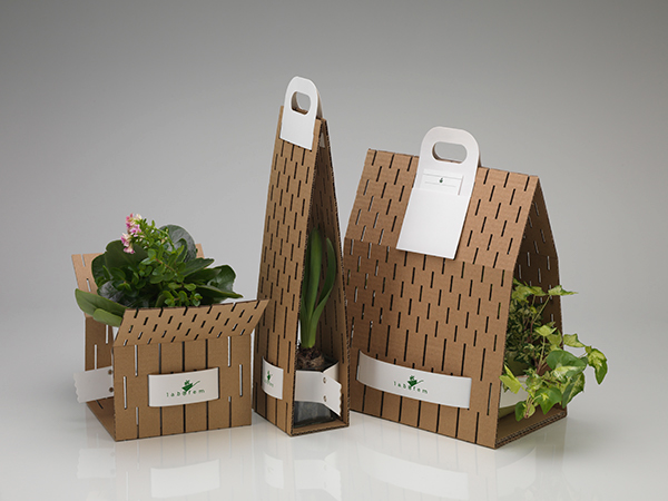 labofem istanbul Turkey carrier cardboard plants ypsilontasarim ypsilon tasarim