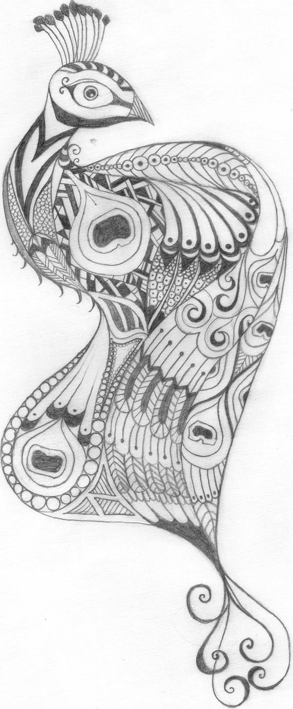 Pencil Sketches Peacock Pencil Sketch Peacock on