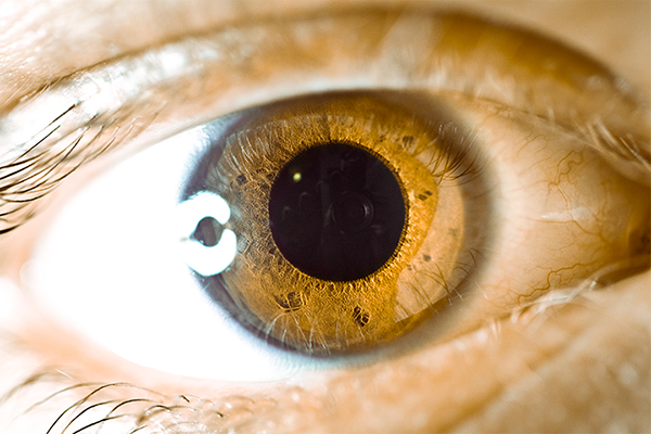 Eye Macro Close-up Wallpaper